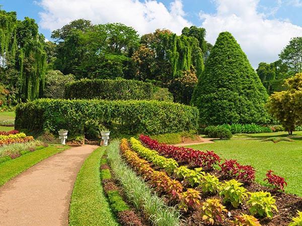 Botanischen Garten Peradeniya