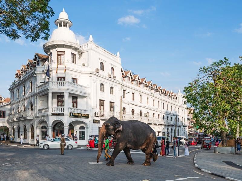 Stadtrundfahrt in Kandy
