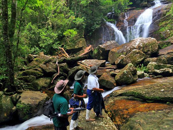 Tagesausflug nach Sinharaja Regenwald 2